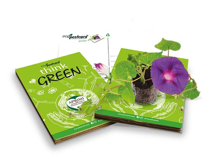 cartolina ecologica con semi